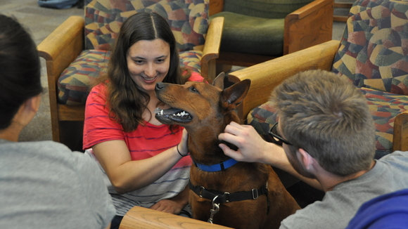 Students and therapy dog